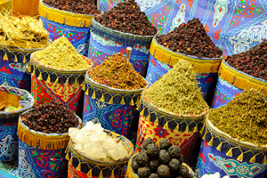 adult study abroad programs - explore markets in Egypt