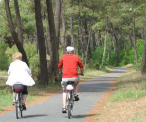Seniors Cultural Travel - seniors biking in France